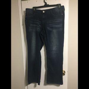 Hydraulic 16W slim bootcut women's jeans
